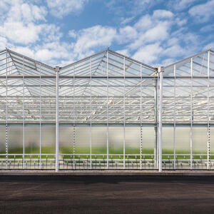 Designing-Your-Indoor-Cannabis-Facility