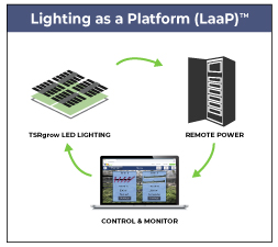 Lighting-as-a-Platform-Diagram